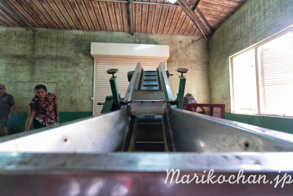 srilanka-kocha-kojo-15